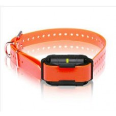 SureStim M Collar/Receiver - Orange