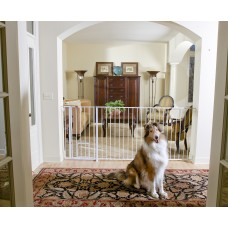 Extra Tall Maxi Walk-Thru Gate with Pet Door